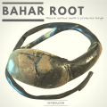 Latest Bahar Root Health Protection Wealth Natural Bracelet, Nature's talisman amulet, BIG, Non Khodamic